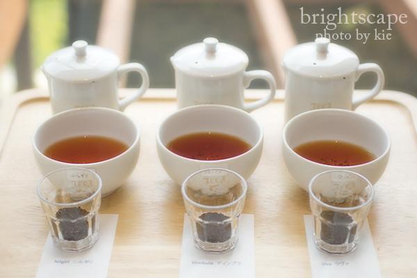 紅茶を愉しむワークショップテイスティング