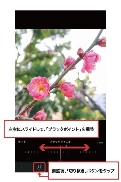 iPhone写真アプリ16