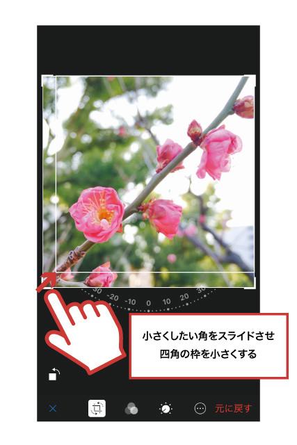 iPhone写真アプリ17
